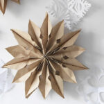 1-Brown Paper Bag Star