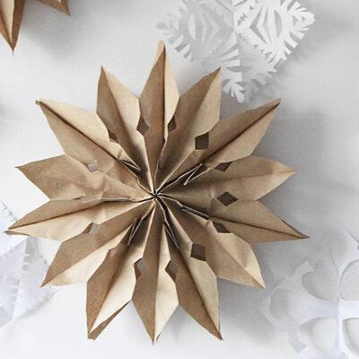 1-Brown Paper Bag Star