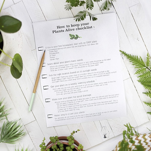Keep your Plants Alive checklist
