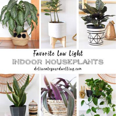 1-Low Light Plants