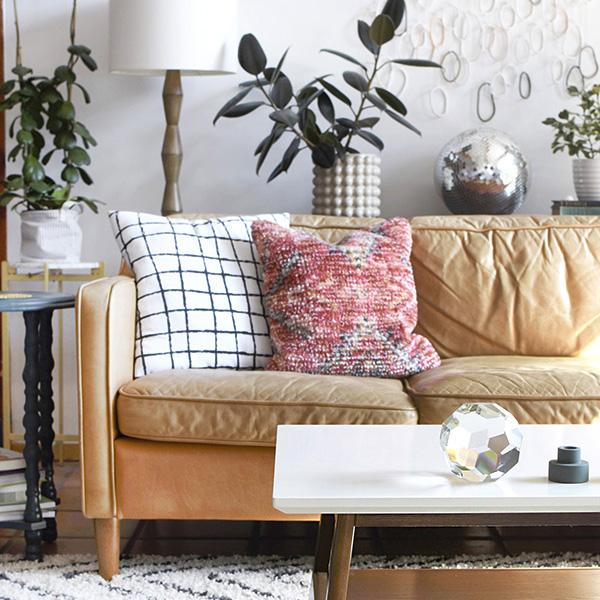Minimalist Living Room with plants