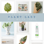1-Ultimate Plant Gift Guide