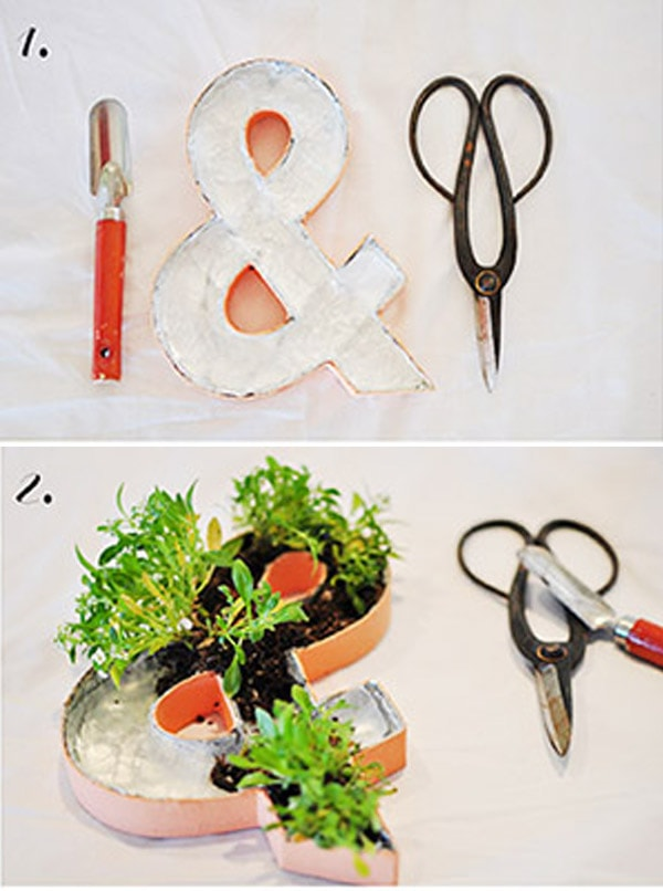 Planted Ampersand Step 4