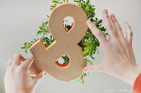 How to make a simple Planted Ampersand decor item! Delineate Your Dwelling