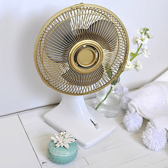 1 Updated Gold Fan- square