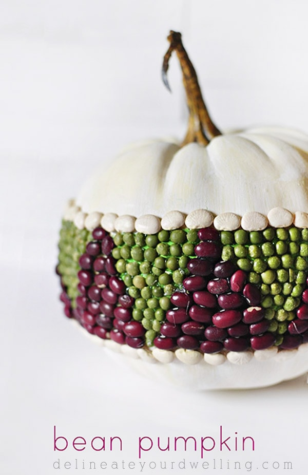 Geometric Bean Pumpkin