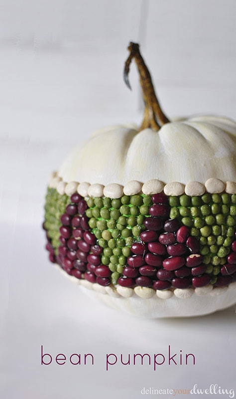 Bean Pumpkin, Delineate Your Dwelling #fall #decor