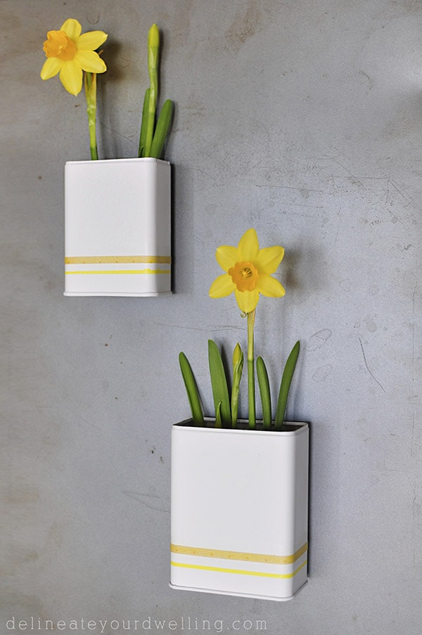 Learn how to make a fun Spring craft project, Magnetic DIY Daffodil Planters out of old spice containers from your kitchen! Delineate Your Dwelling #springcraft #daffodilcraft #daffodilplanter