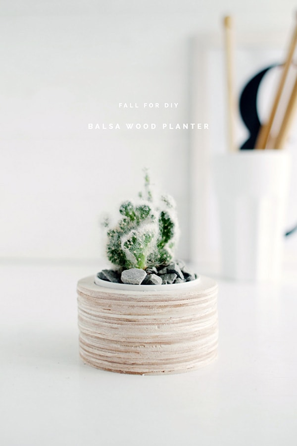 Fall-For-DIY-Balsa-Wood-Planter, Feature Friday