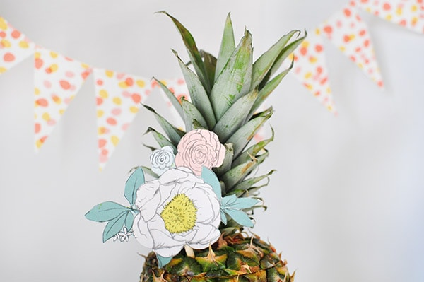Pineapple Lady hat