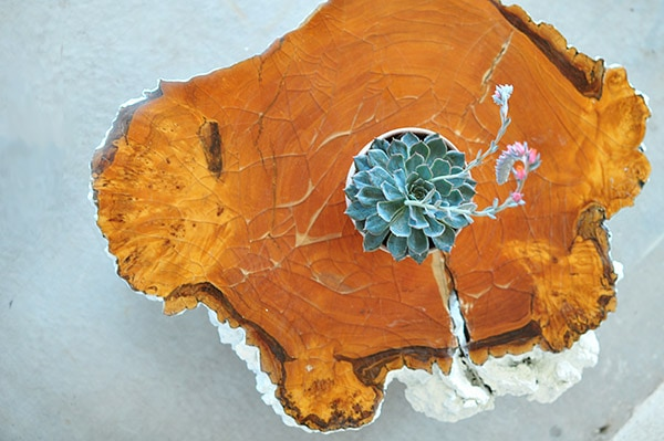Tree Stump Table final