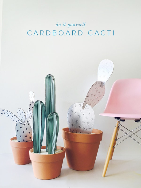 CARDBOARD-CACTI-Best of Cacti and Succulent