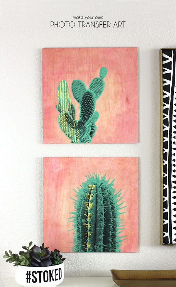 cactus-art, Best of Cacti and Succulent