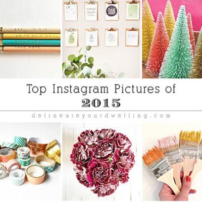 1 Top Instagram Pictures of 2015
