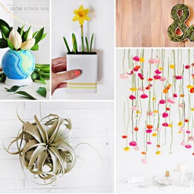 1 Plant DIYs to try