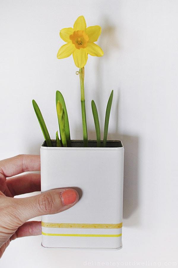 Daffodil-Planter-DIY-plant-diys