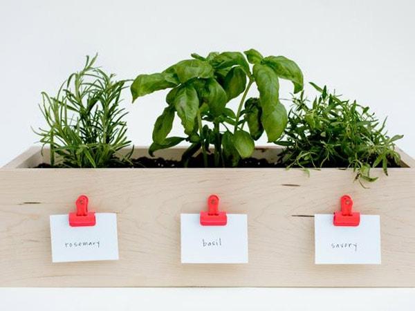 Herb-Box-plant-diys