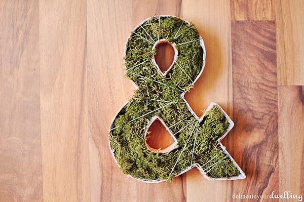 Plant-Ampersand-plant-diys