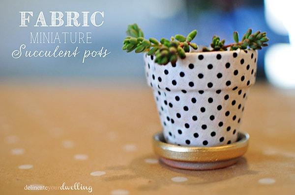 garden-miniature-succulent-pots-plant-diys