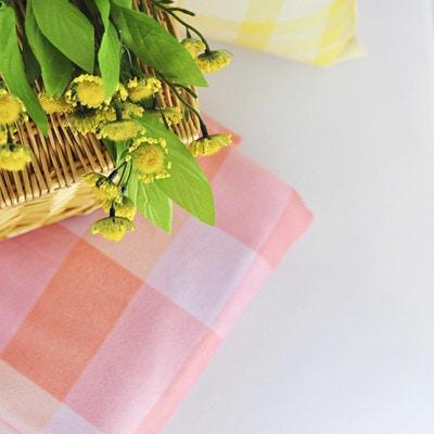 1 Plaid Picnic Blanket