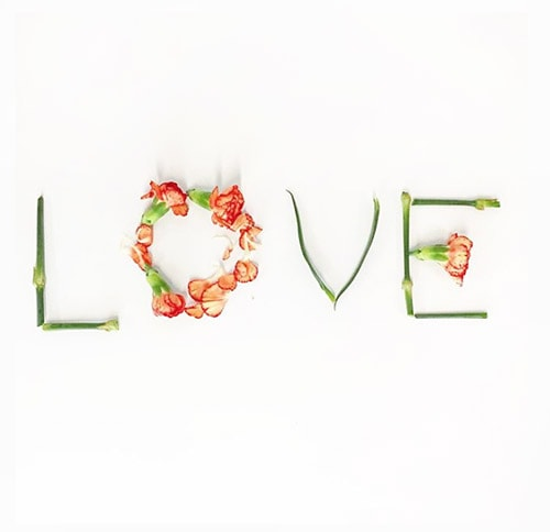 Flower Love 10 Plant Love