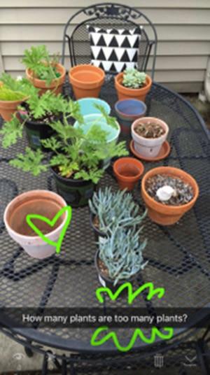 Plant Snapchat