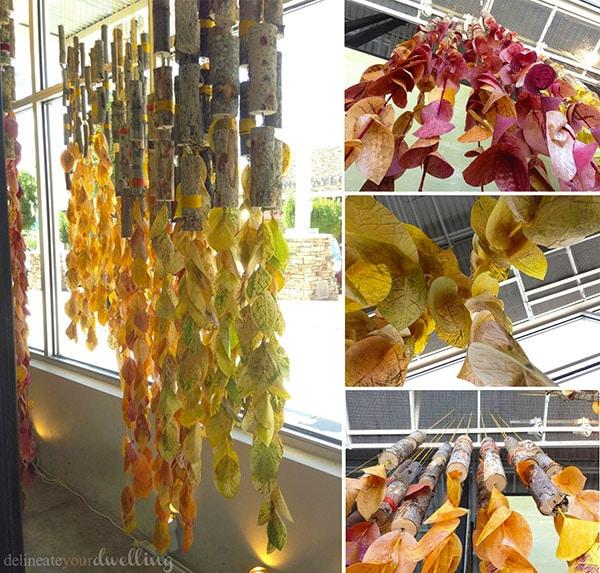 fall-anthropologic-leaf final-display
