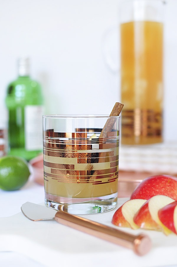 Perfect Fall Apple Cider Mule Cocktail cinnamon stick