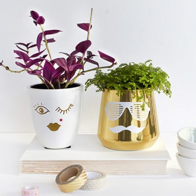 1 His-Hers DIY Face Planter