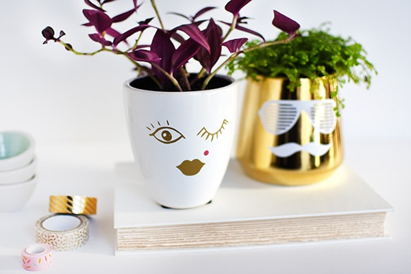Learn how to make simple craft His + Her DIY Face Planters using a plain vase and some vinyl stickers! You won't regret making this cheerful succulent planter with faces. Delineate Your Dwelling #faceplanter #succulentpot #DIYfacevase