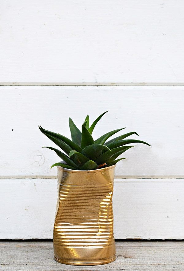 gold-can-diy-planters-feature-900x444