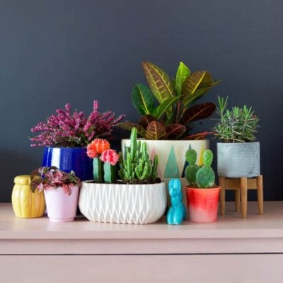 PMQfortwo Spray-Paint-Ombre-Planters-25-1
