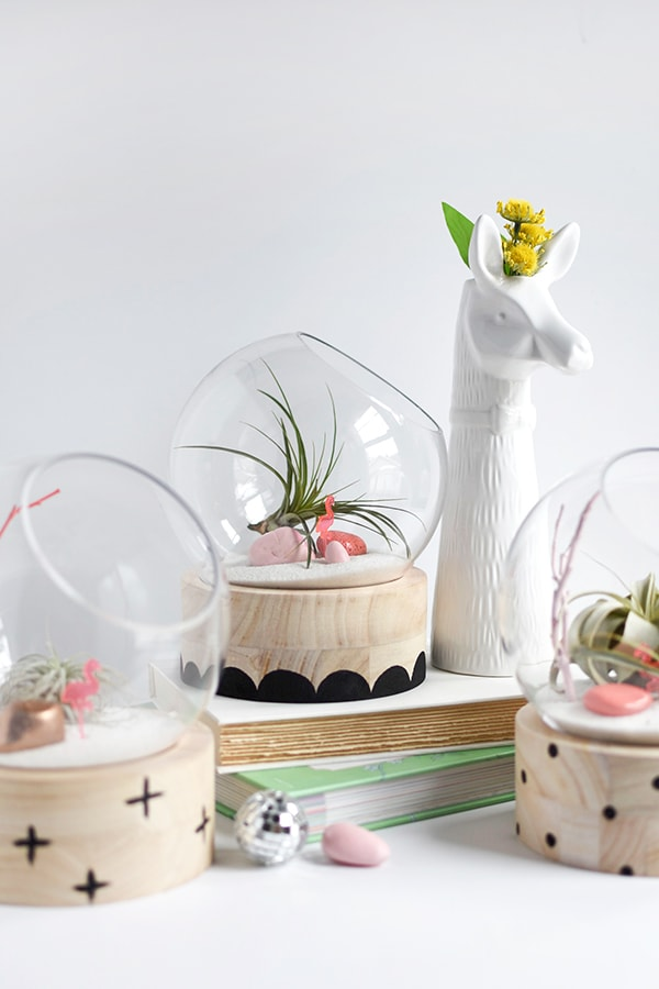 Modern-Terrariums, Top Reader Creative, Craft, Home Decor 2017 Posts, Delineate Your Dwelling