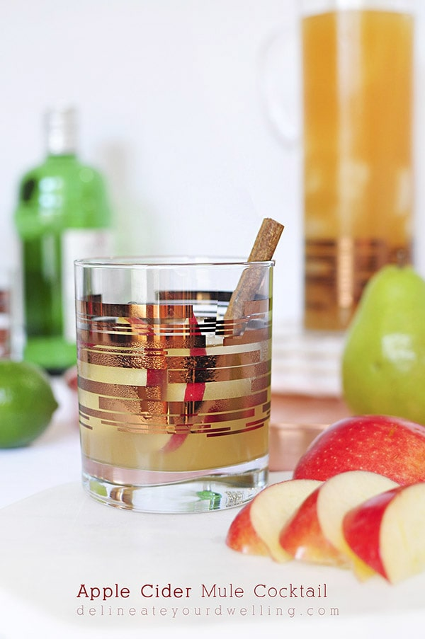 Fall-Apple-Cider-Mule-Cocktail