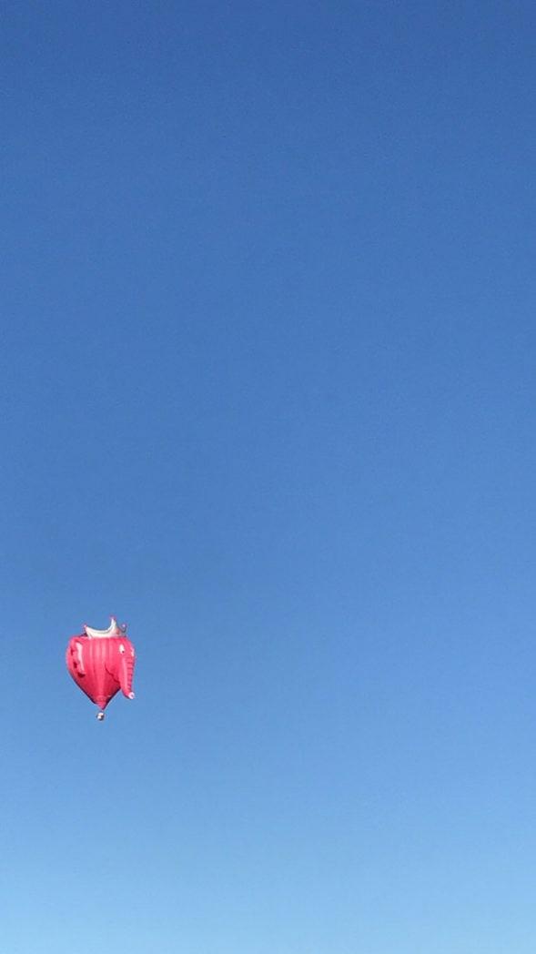 Balloon Fiesta Pink Elephant Balloon