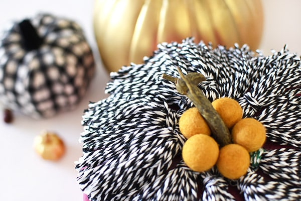 How to create a Purple Tassel Pumpkin this Fall! Delineate Your Dwelling