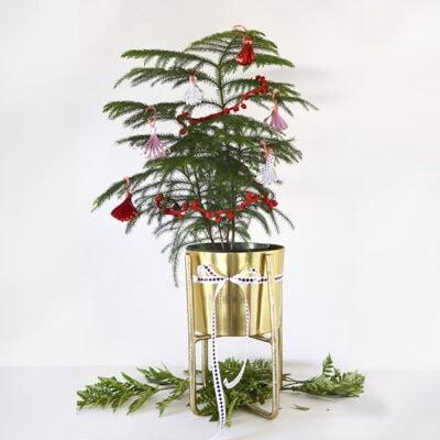 1-Ribbon Ornament