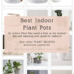 Best Indoor Plant Pots. Do Indoor Plant Pots need a hole at the bottom? Are self watering pots good for plants? And many other plant related questions answered! Delineate Your Dwelling #planthelp #plantquestions #indoorplanthelp
