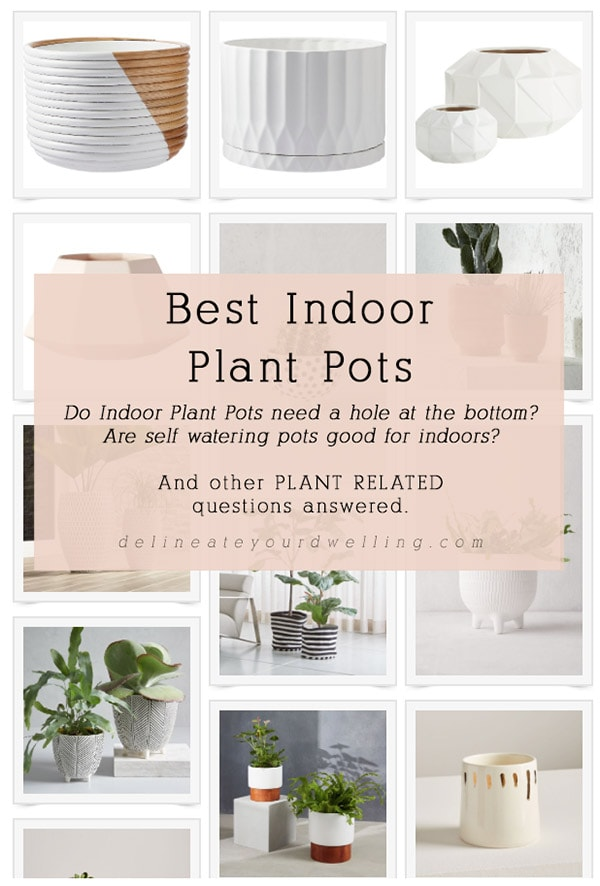 Best Indoor Plant Pots