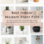 Best-Indoor-Planters