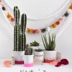 Color-Block-Cactus