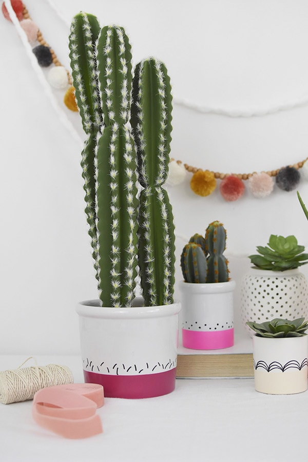 Tall Skinny Cactus Color Block pot
