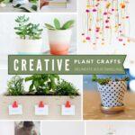Creative-Plant-DIY-Ideas