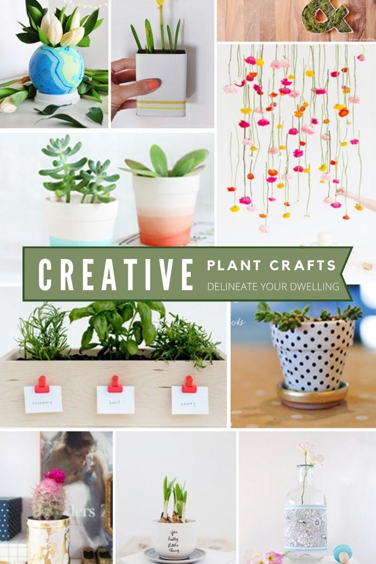 Creative Plant Craft Ideas