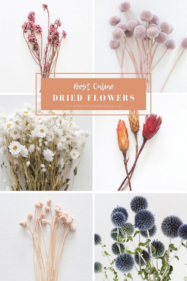 Online Dried Flowers