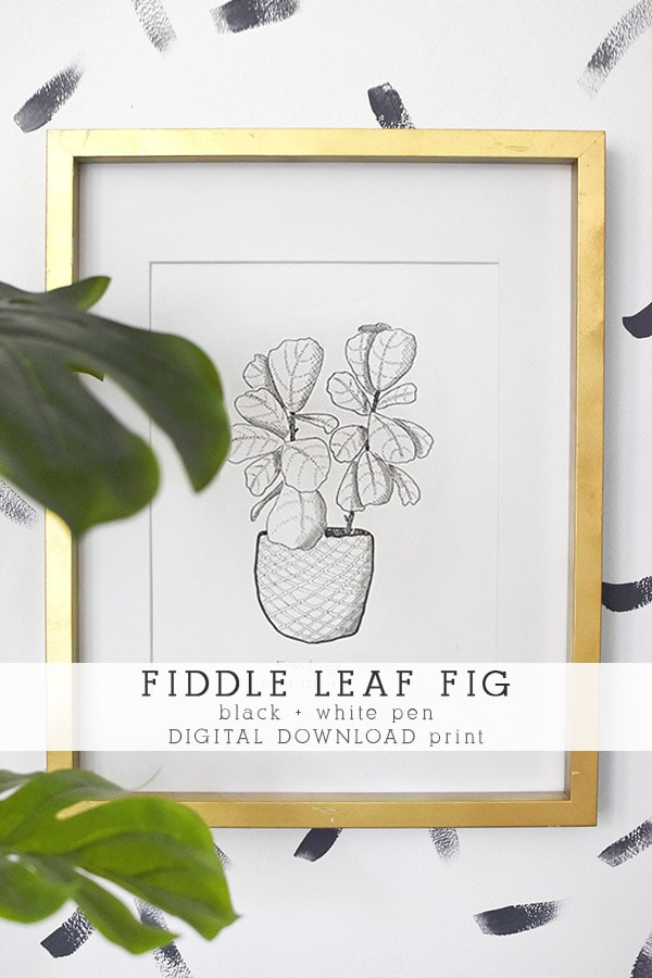 Fiddle Leaf Fig Art Print