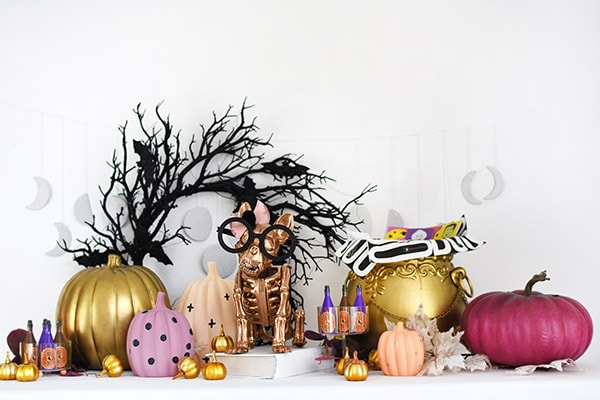 Gold French Bull Dog Skeleton with Pastel Pumpkins