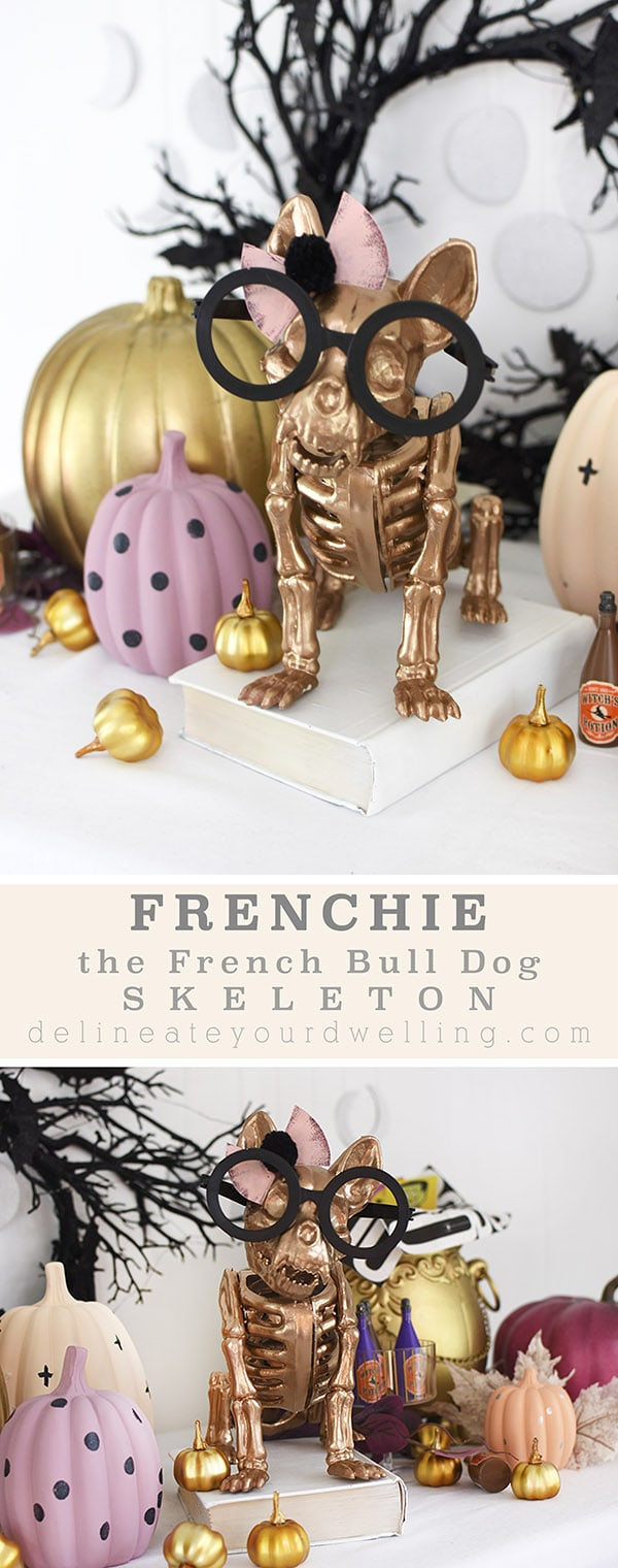 Halloween Gold French Bull Dog Skeleton with black rimmed glasses and pastel pumpkins