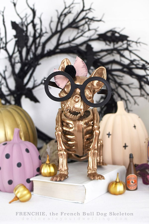 Gold French Bull Dog Halloween Skeleton