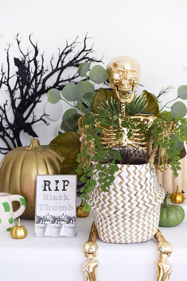 Golden Plant Lady Skeleton for Halloween
